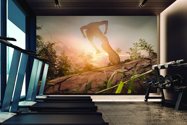 aspex-wall-protection-fitness-room