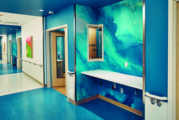 aspex-wall-protection-healthcare